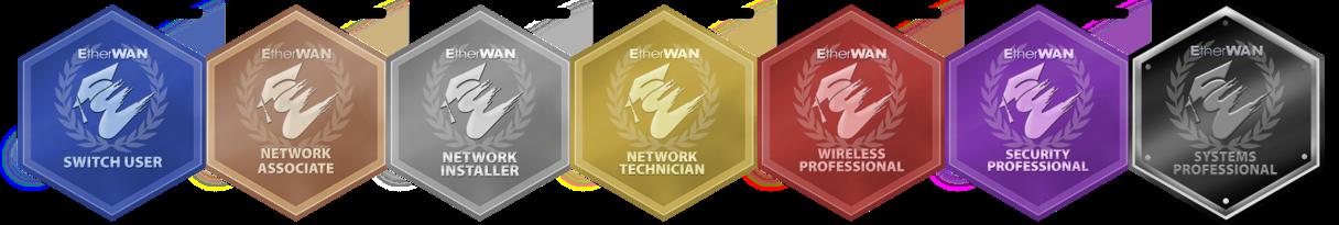 EtherWAN Badges